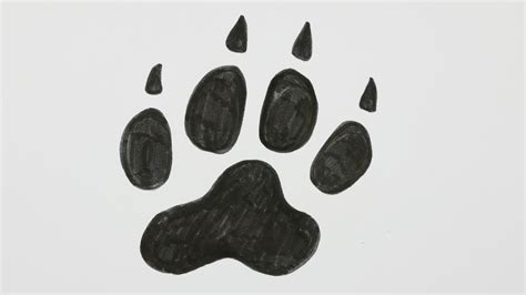 how to draw a puppy paw how to draw a footprint paw comic doodle 14