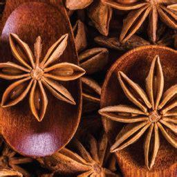 manfaat daun mint  kesehatan cairo food