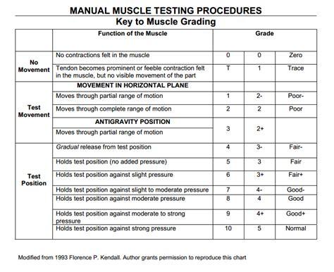 manual pattern grading pdf manual muscle testing grading chart florence kendall
