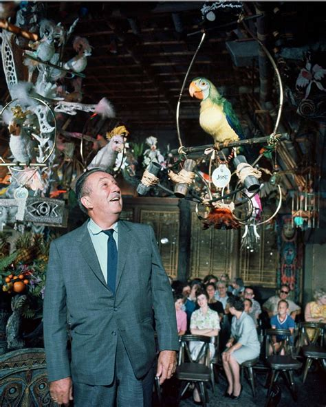 tiki room song fifty five years of magic at disneyland park 171 disney parks