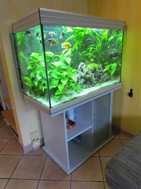 gebrauchtes aquarium kaufen aquaristik in kirchheim unter teck kaufen bei deinetierwelt