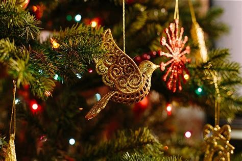 images of christmas season how to stay healthy throughout the christmas season
