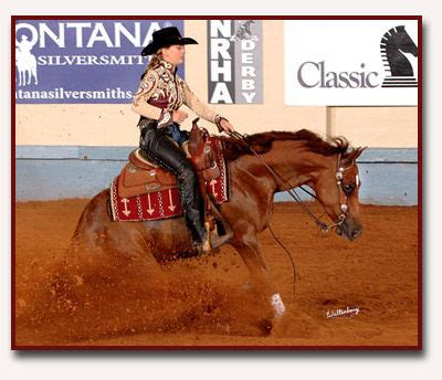 how to your to stop how to your to do a reining stop all