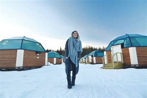Coolest Treehouse In The World enjoy the coolest winter holiday arctic snowhotel