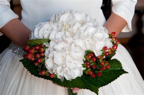 imagenes de hortencias blancas flores el tocador de angels