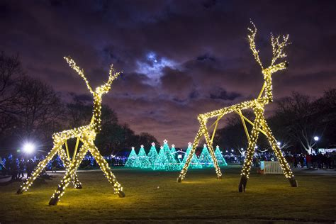 brookfield zoo lights hours events guide from chicago tonight tis the season chicago tonight wttw
