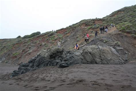 black sand california black sands sausalito ca california beaches