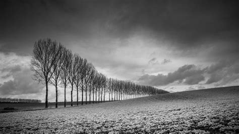 black and white how to master black and white photography techradar