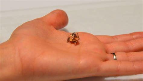 Self Folding Paper - quot origami quot miniature self folding robot can walk swim