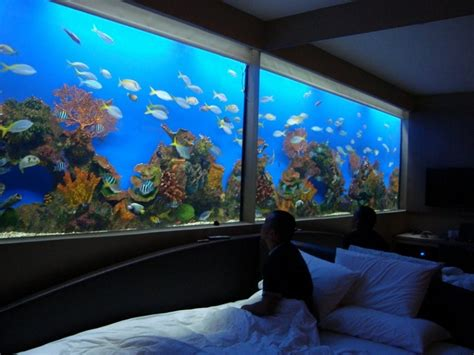 aquarium bedrooms bedroom fish tank photos and video wylielauderhouse com