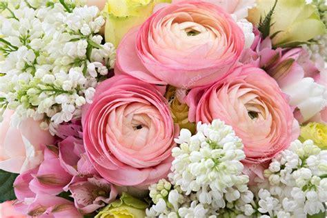 foto fiori di primavera sfondo fiori di primavera foto stock 169 mny jhee 76397051