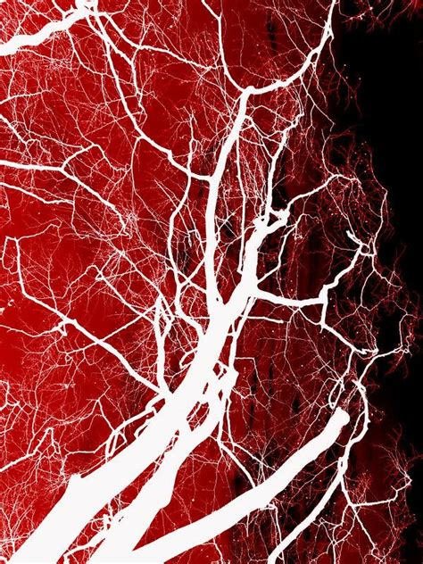 vein pattern photoshop blood textures for photoshop psddude