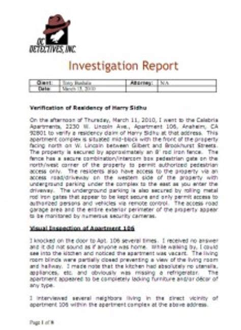 fraud investigation report template criminal records instant background checks background