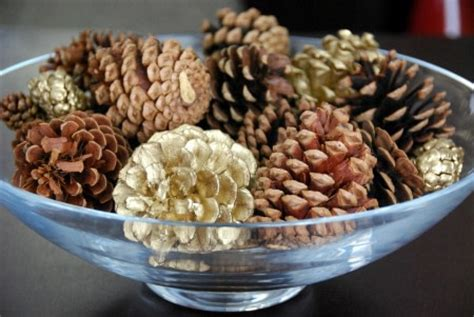 Things To Put In Decorative Bowls by Sweet Bouquet Of Pine Cones 183 How To Make A Of