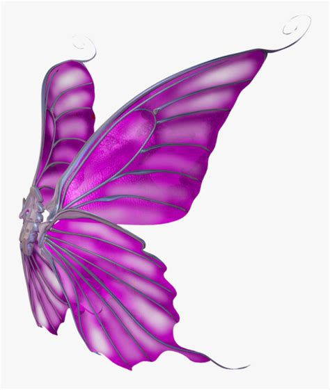 butterfly wings png clipart png  alas de