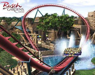 zoozooreview busch gardens ta bay