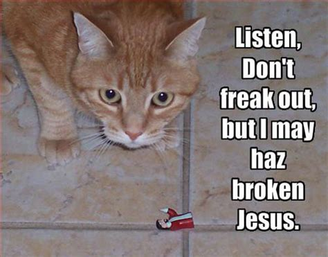 Jesus Cat Meme - 30 best lolcats ever smosh