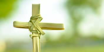 Palm sunday images whatsapp dp fb profile cover hd wallpapers 2016