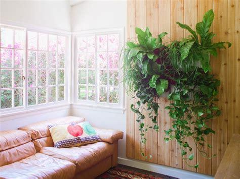 indoor living wall vertical garden indoor and outdoor lawn garden bright living room living wall indoor