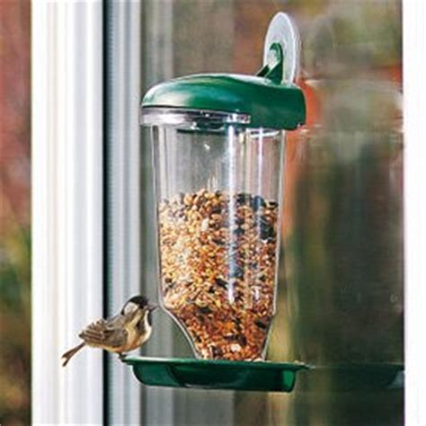window bird feeder station with suction cup amazon co uk