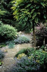 small trees for growing in gardens growing tips buy on line plants