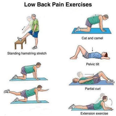 back strengthening exercises lower and mid back