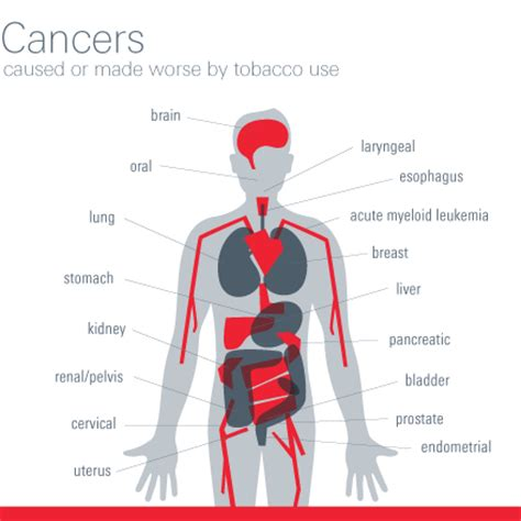 related keywords suggestions for disease by