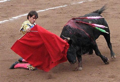 why do bulls the color fact or 83 do bulls really the colour