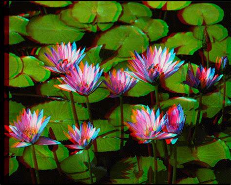 convertir imagenes en 3d online convertir imagenes normales a imagenes 3d