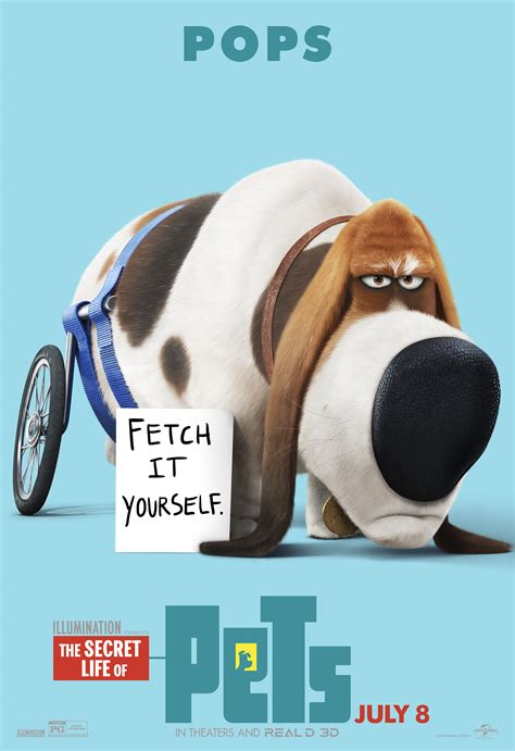 secret of pets the secret of pets posters reveal new looks collider