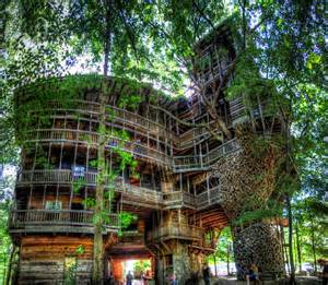 Portland Oregon 1 Bedroom Apartments The Minister S Tree House The Largest Tree House In The