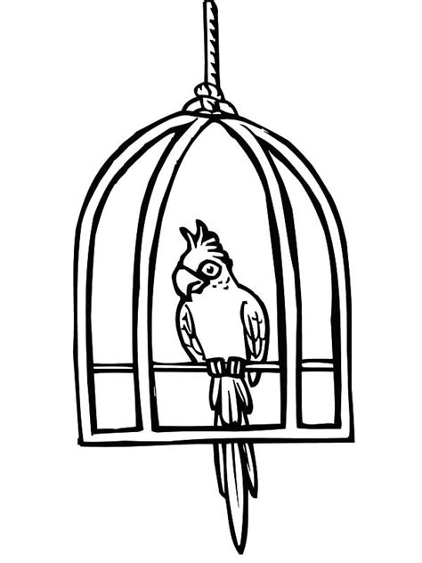 coloring page bird cage free bird cage coloring pages