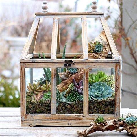 small indoor garden ideas 25 best ideas about indoor succulent garden on