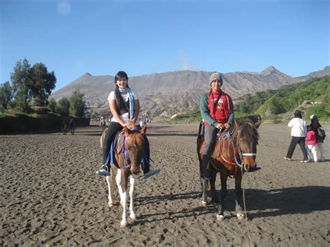 Bromo Tour Backpacker Murah   Tips Dan Cara Backpaker Ke Bromo