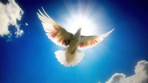 contigo espiritu santo 0829760636 esp 205 ritu santo quiero trabajar contigo iglesia monte de sion