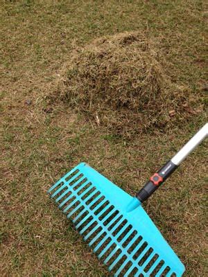 Nach Dem Vertikutieren by Rasenpflege Im Fr 252 Hjahr Tipps Zum Vertikutieren D 252 Ngen