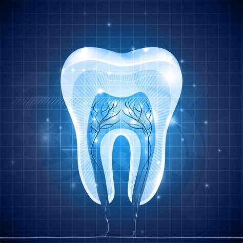 abstract tooth cross section stock illustration