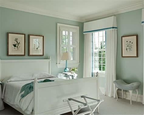 palladian blue walls home design ideas pictures remodel and decor