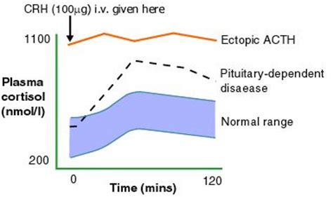 cushings diagnosis endocrinesurgery.net.au