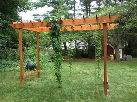 backyard grape trellis design d home and arbors on pinterest