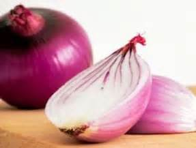Ton Nasa Untuk Lele budidaya bawang merah panduan budidaya agro