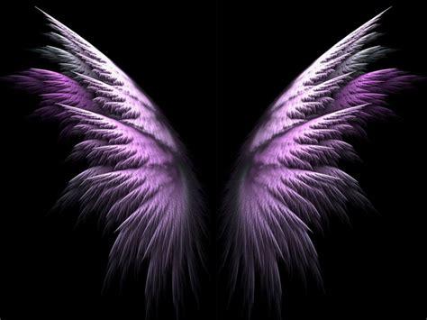 angel wings angel wing wallpaper wallpapersafari