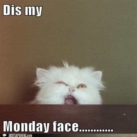 Happy Monday Memes - 10 funny monday morning faces