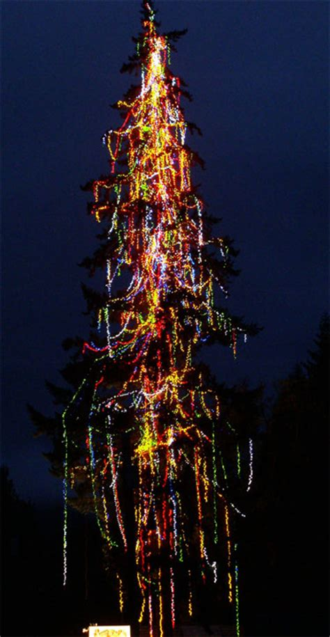 where is the biggest chistmas tree in the whole world lighted living tree 160