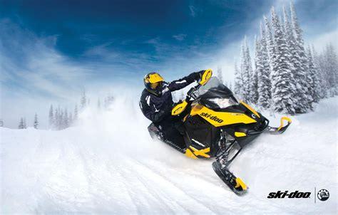 Wallpaper Forest Snow Yellow Sport Sport Snow