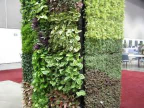 Build a living wall and do vertical gardening