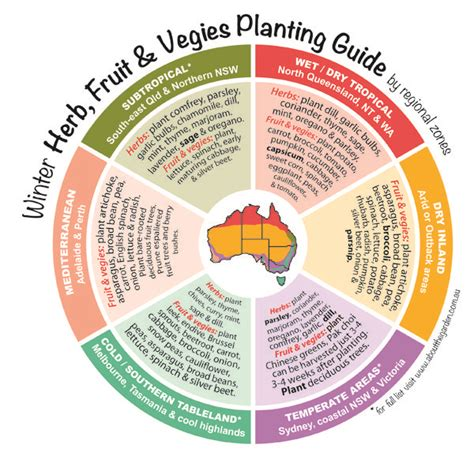 herb planting chart pin by about the garden magazine on grow now winter