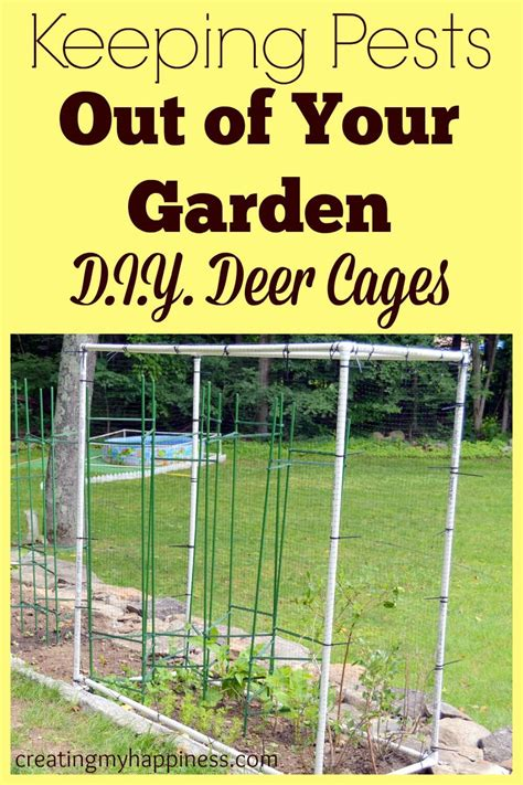 how to keep pests away from garden keeping pests out of your garden d i y deer cages