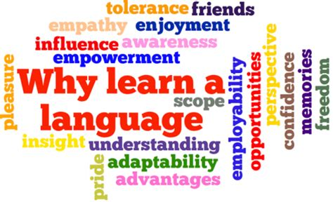comfortable in spanish language department of modern languages literatures department