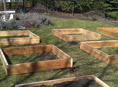 how to build raised beds raised bed construction 28 images tagan s kitchen